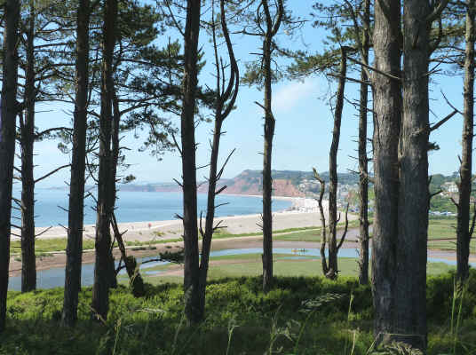Budleigh Salterton and East Devon coast
