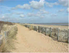 Skegness coast dunes
