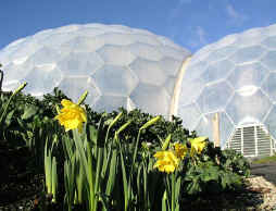 Eden Domes Cornwall