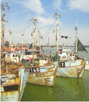 Grimsby Fishing Boats